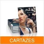 Cartazes (Materiais Gráficos)